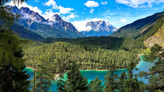Taiga-Wald in Russland