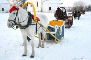 Silvesterreise nach Moskau, Schlittenfahrt